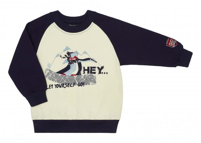 Толстовки и свитшоты Lucky Child Свитшот для мальчика Северный ветер