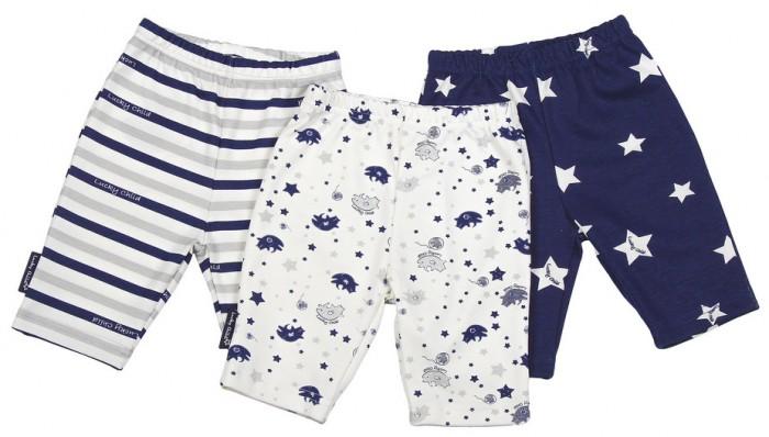 Брюки, джинсы и штанишки Lucky Child Комплект детский Шорты  3 шт. Котики пижамы lucky child пижама