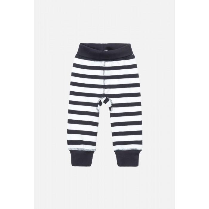 Брюки, джинсы и штанишки Maloo Брюки детские для мальчиков Draco