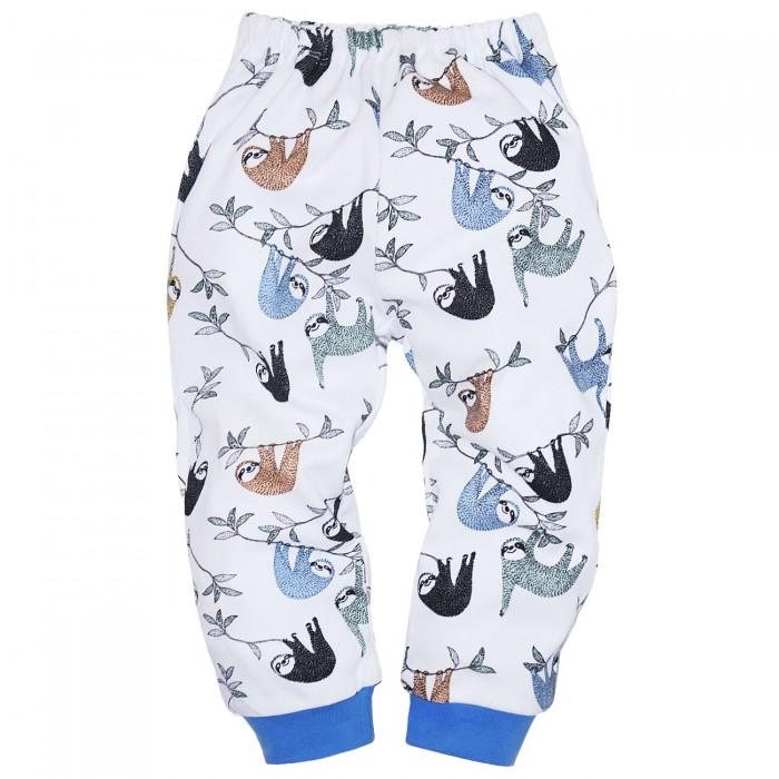 брюки  джинсы и штанишки Брюки и джинсы Milimbi Штанишки для мальчика Джунгли