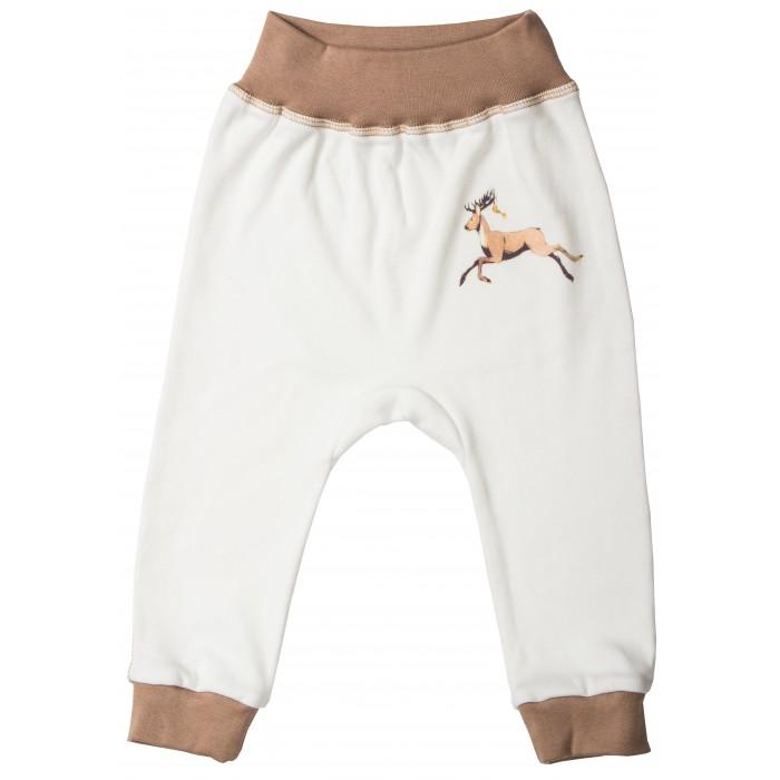 Брюки, джинсы и штанишки Милуша Штанишки для мальчика Маленький Пираха брюки джинсы и штанишки s'cool брюки для девочки hip hop 174059