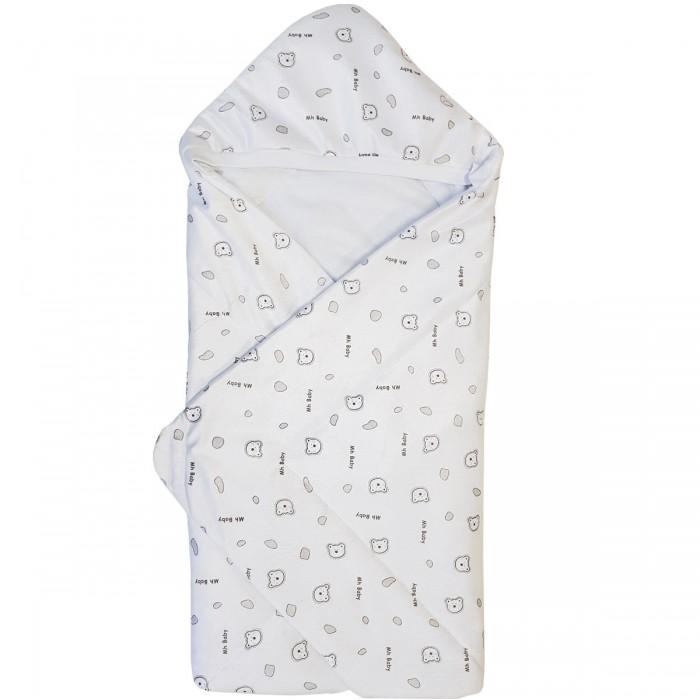 Купить Конверты на выписку, Папитто Конверт-одеяло вельбоа 2158
