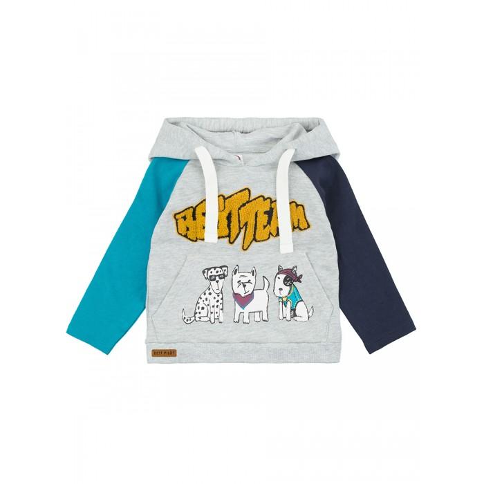 толстовки и свитшоты aruna худи для детей тигр Толстовки и свитшоты Pixo Худи для мальчиков Cabs