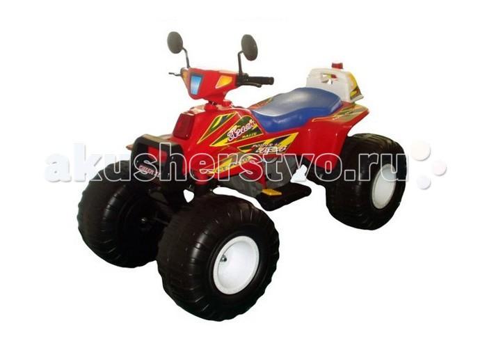 Электромобиль Пламенный мотор Квадроцикл Big Racer 95005/95006Квадроцикл Big Racer 95005/95006Пламенный мотор Квадроцикл Big Racer 95005/95006 предназначен для детей от 5 лет.   Количество пассажиров – до 2 человек (суммарная масса не более 50 кг).  Материал - пластмасса повышенной прочности и сталь.  Внешний вид – удобное сидение, имитация фар, боковые зеркала.  Автомобиль ездит вперед/назад (переключатель с правой стороны).  Повышенная/пониженная передача (переключатель с левой стороны).  Звуковая имитация (красная кнопка на левой стороне).  Включатель света фар (желтая кнопка на левой стороне).  Запуск и остановка. Для начала движения необходимо нажать на две ножные педали. Правая педаль - для контроля скорости движения, левая педаль (сцепление) - для начала движения и остановки.   Особенности:  Тип аккумулятора: двухъячеечные, 6В/12Ач  Двигатель: двухрежимный двигатель постоянного тока с повышенным крутящим моментом Зарядное устройство: выход 12В/1А  Время заряда: 10 часов Время работы: 90–120 минут  Возраст детей: от 5 лет  Грузоподъемность: 50 кг.  Комплектация:  - Зеркала заднего вида  - Зарядное устройство  - Руль  - Колеса  - Другие детали для сборки  - Инструкция.<br>