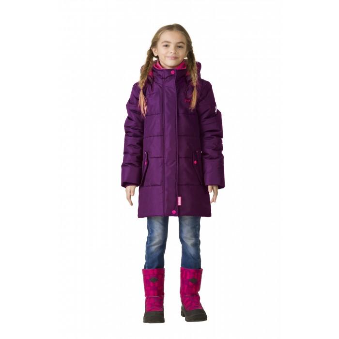 Детская одежда , Куртки, пальто, пуховики Premont Пальто зимнее Тюльпан Рекреадо арт: 406799 -  Куртки, пальто, пуховики