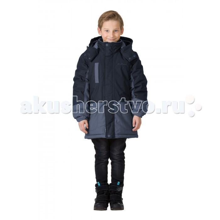 Детская одежда , Куртки, пальто, пуховики Premont Парка зимняя Неуловимый Сейбл арт: 406824 -  Куртки, пальто, пуховики
