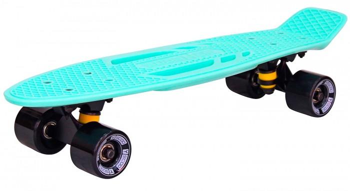 R-Toys Скейтборд Skateboard Fishbone с ручкой 22
