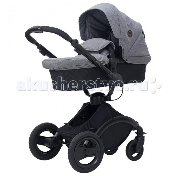 Детские коляски , Коляски 2 в 1 Рант Omega Alu 2 в 1 арт: 515896 -  Коляски 2 в 1