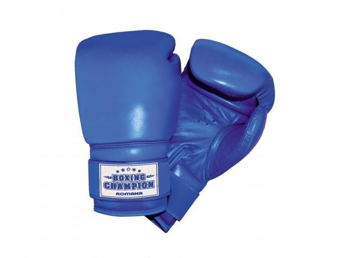 Спортивный инвентарь Romana Перчатки боксерские для детей 7-10 лет 6 унций ДМФ-МК-01.70.04