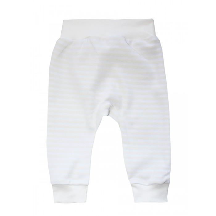Брюки, джинсы и штанишки КотМарКот Штанишки Шпиц брюки джинсы и штанишки котмаркот штанишки мишка