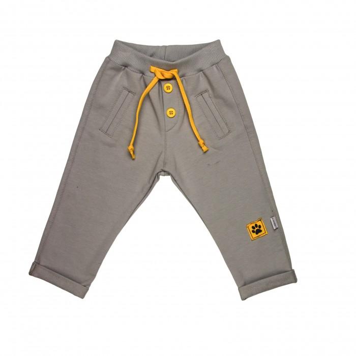 брюки  джинсы и штанишки Брюки и джинсы СовёнокЯ Штанишки Два кота 14-894М