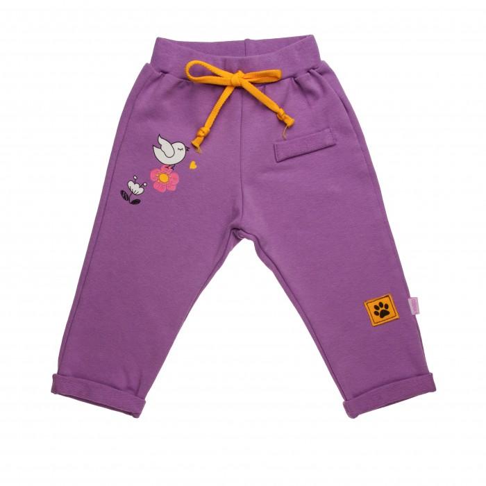брюки  джинсы и штанишки Брюки и джинсы СовёнокЯ Штанишки Два кота 14-895Д