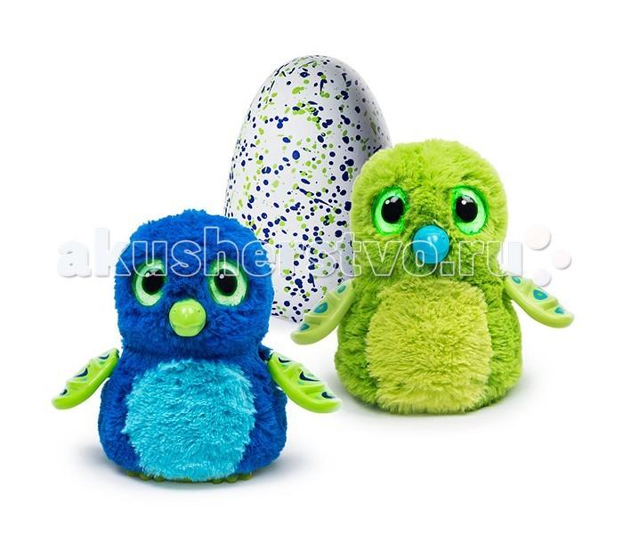Интерактивная игрушка Hatchimals Дракоша вылупляющийся из яйцаДракоша вылупляющийся из яйцаHatchimals Дракоша - интерактивный питомец вылупляющийся из яйца  Hatchimals - совершенно революционная игрушка! Это не просто интерактивный питомец - он растет и совершенствуется, как любое живое существо. Дракоша может оказаться зеленым или голубеньким - узнать заранее это нельзя, ведь малыш находится в яйце и еще не появился на свет! Он любит общаться, играть, о нем надо заботиться, кормить. У питомца разные стадии роста - младенец, ребенок и взрослый.  Для работы необходимо 2 АА батарейки. В комплект входят батарейки, с помощью заряда которой питомец может вылупиться. После вылупления, батарейки можно заменить.  Интерактивный дракончик станет отличным питомцев для мальчика! Он - настоящее волшебное существо, энергичный, добрый и смелый.  Характер питомца-дракончика забавный смелый энергичный скромный нежный  Помогите своему питомцу расти и развиваться! Но сначала надо помочь ему вылупиться.  Когда питомец еще не вылупился.  Итак, ваш дракончик еще в яйце. Но это не значит, что он не реагирует на ваши действия! Приложите ухо к яйцу и услышите биение его сердца. Малыш переворачивается внутри и общается постукиванием. К яйцу нужно относиться бережно - согревать его, поглаживать.  Как помочь питомцу вылупиться?  Чем больше Вы согреваете яйцо, тем быстрее малыш появится на свет. Можно активно согревать его в течение дня, а можно растянуть процесс на более долгий срок. Все зависит от Вас!  Когда питомец будет готов вылупиться, сквозь поверхность яйца Вы увидите огоньки. Потом он будет разбивать скорлупу клювом. Здесь Вы тоже можете помочь ему, взяв на руки, поглаживая, согревая - зверек будет вылупляться еще активнее!  Зверек вылупился! Первая стадия: младенец  Издает звуки младенца. Основная ваша задача на этом этапе - заботиться о нем, кормить, согревать. Хлопки пугают его, питомец может только крутиться, забавно лепечет.  Вторая стадия: ребенок  Малыш подрос и теперь нужно на