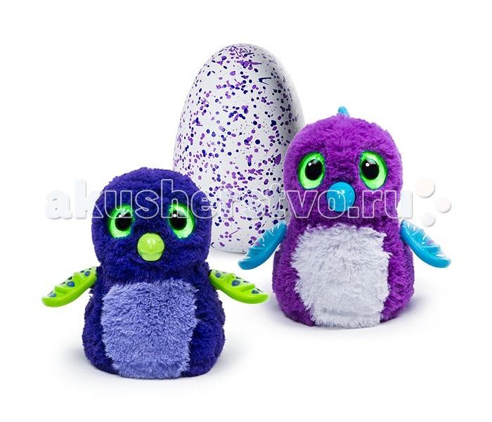 Интерактивная игрушка Hatchimals Дракоша вылупляющийся из яйца