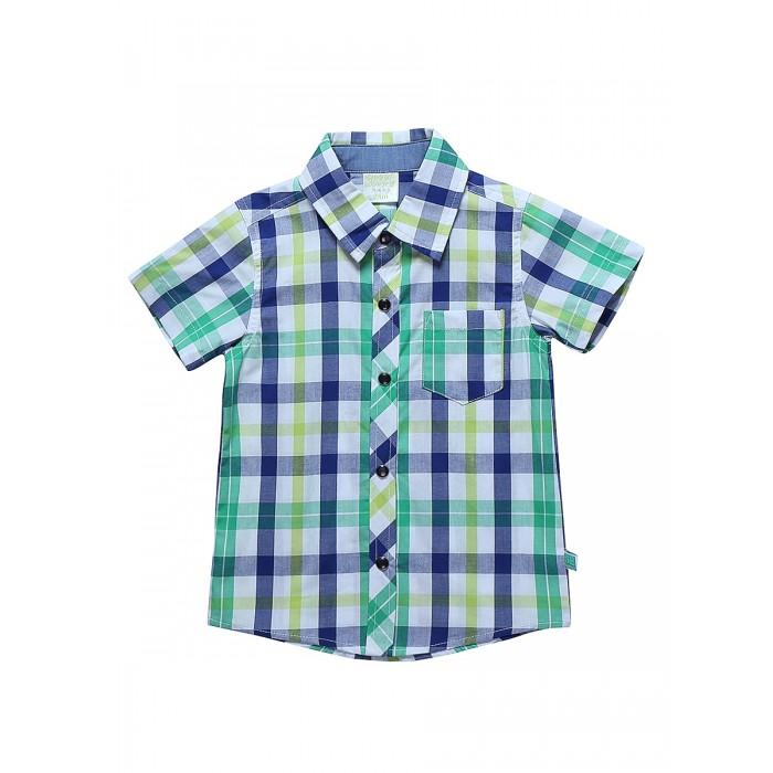 Блузки и рубашки Sweet Berry Рубашка для мальчика Smile of monsters 811076 блузки и рубашки