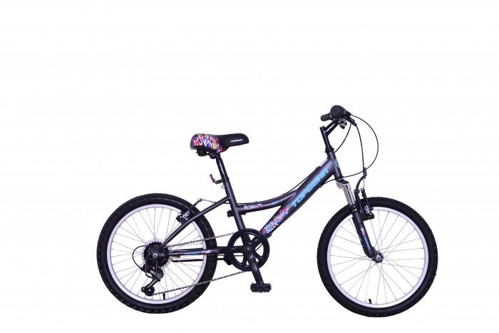 Двухколесные велосипеды TopGear Mystic