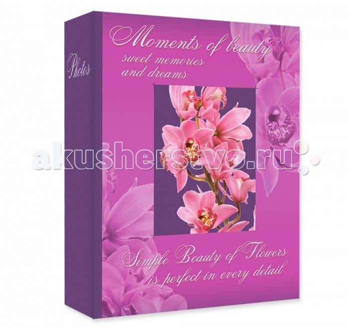 Фотоальбомы и рамки Veld CO Фотоальбом Fresh aroma 200 фотографий 10х15 см