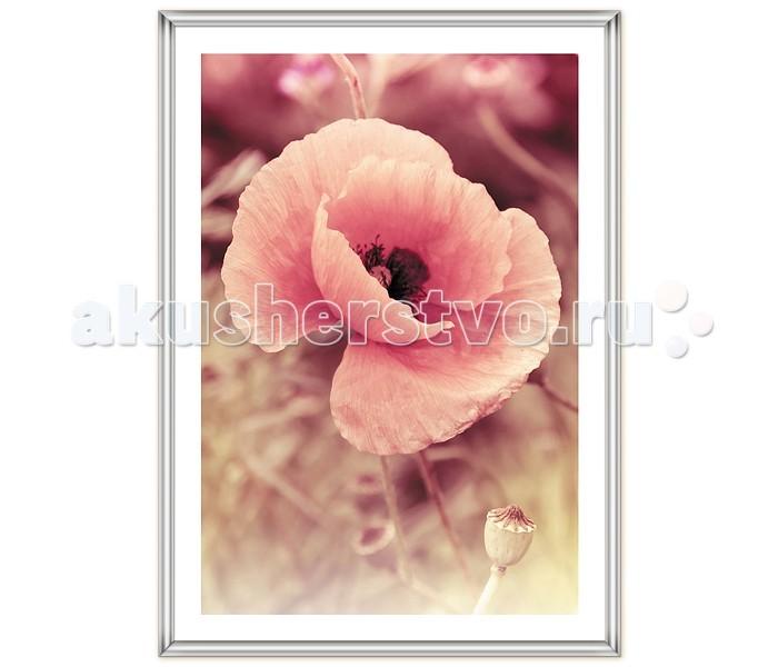 Фотоальбомы и рамки Veld CO Фоторамка Poster 21х29.7 см картина mister poster розовые цветы вишни 22 х 14 5 см