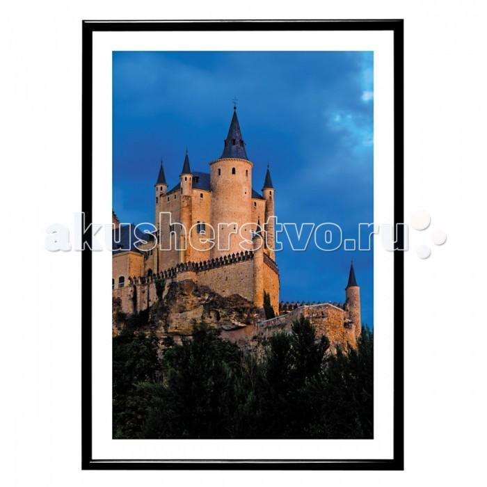 Фотоальбомы и рамки Veld CO Фоторамка Poster lux 15х21 см