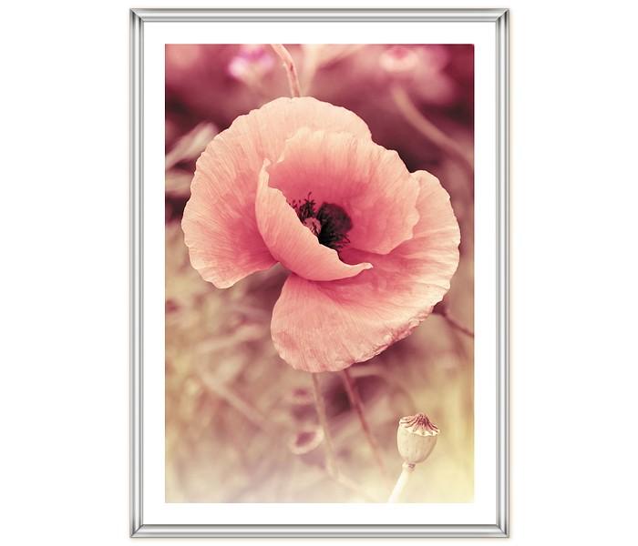 Фотоальбомы и рамки Veld CO Фоторамка Poster lux 21х29.7 см картина mister poster розовые цветы вишни 22 х 14 5 см