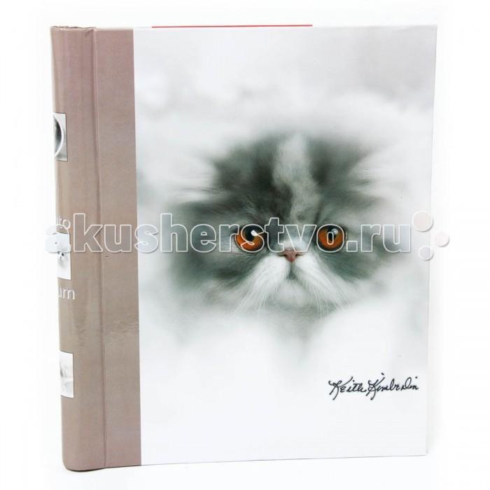 Фотоальбомы и рамки Veld CO Магнитный фотоальбом Котята 10 листов 23х28 см veld co фотоальбом 20 магнитныхлистов 23x28см animal friends