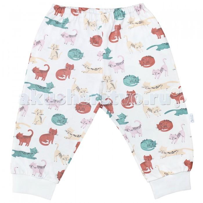 Брюки, джинсы и штанишки Веселый малыш Штанишки Кошки 33170