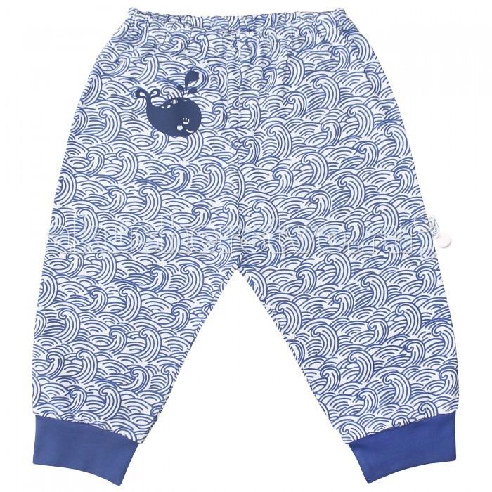 Брюки, джинсы и штанишки Веселый малыш Штанишки Кит 33170 детская одежда