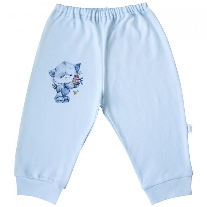 Брюки, джинсы и штанишки Веселый малыш Штанишки Котик 33320 брюки джинсы и штанишки веселый малыш штанишки спелая вишня 33320