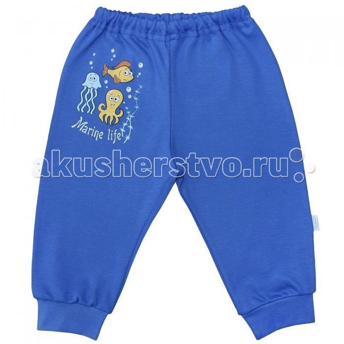 Брюки, джинсы и штанишки Веселый малыш Штанишки Морская жизнь 33320
