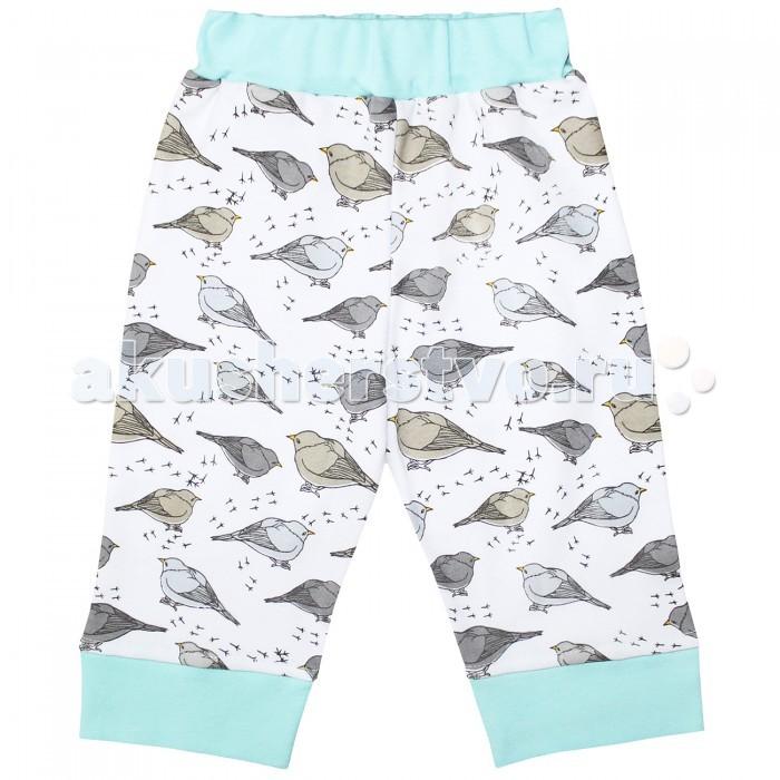 Брюки, джинсы и штанишки Веселый малыш Штанишки Птички 132/320