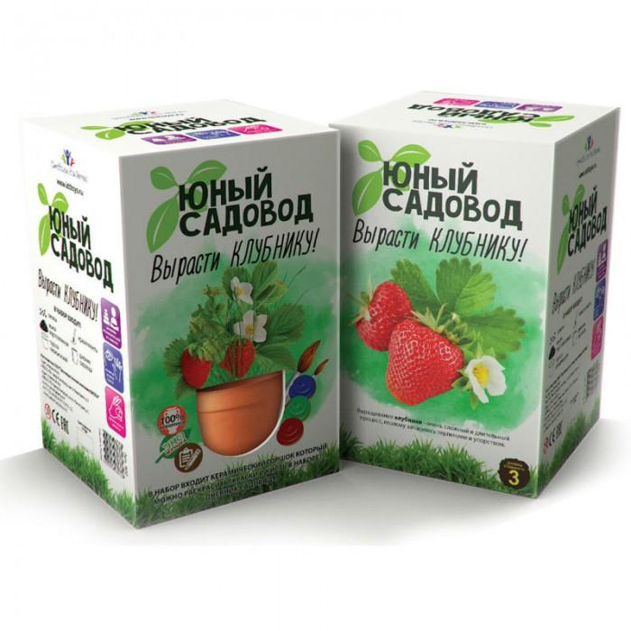 Фото - Наборы для выращивания Инновации для детей Набор для выращивания растений Юный садовод. набор для выращивания инновации для детей юный садовод вырасти петунию