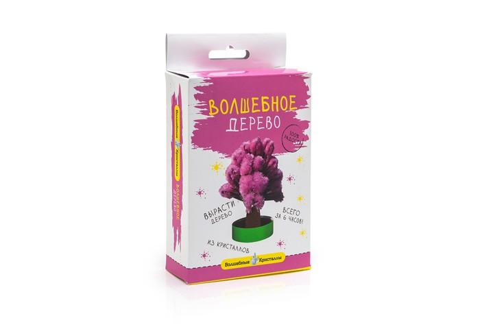 Наборы для творчества Волшебные кристаллы Набор Дерево наборы для выращивания растений вырасти дерево набор для выращивания ель канадская голубая