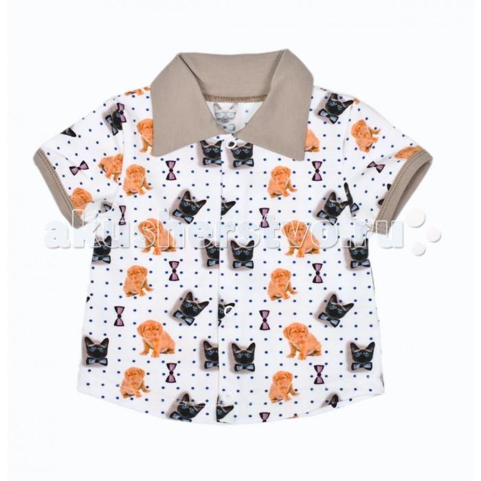 Блузки и рубашки ЯБольшой Рубашка короткий рукав Счастливчик 85-131-01 футболки и топы ябольшой туника короткий рукав монстрики 47 73 02