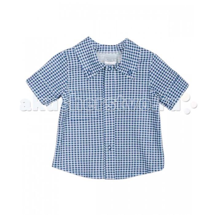 Блузки и рубашки ЯБольшой Рубашка Прогулка математика для малышей я считаю до 100