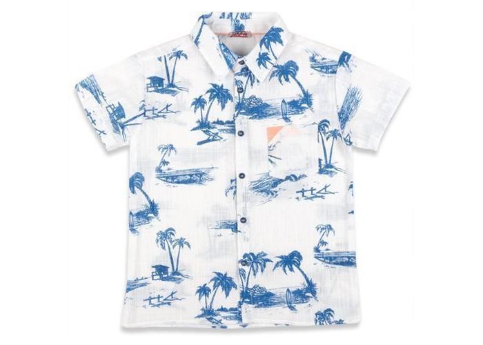 Детская одежда , Блузки и рубашки Zeyland Рубашка для мальчика 71Z3SPJ81 арт: 343795 -  Блузки и рубашки
