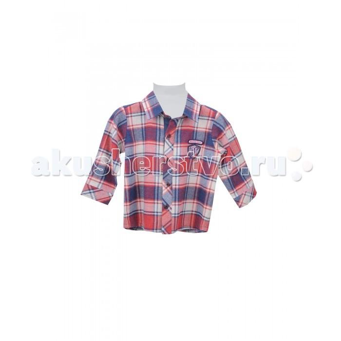 Детская одежда , Блузки и рубашки Zeyland Рубашка для мальчика 72M1CLM81/72M3KLM81 арт: 412579 -  Блузки и рубашки